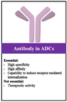 <p>Figure 3. Main considerations in producing antibodies for ADC design and development.</p>