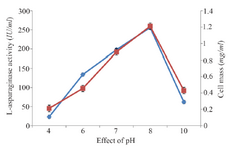 <p>Figure 1. Effect of pH on growth and L-asparaginase production.</p>