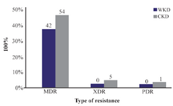 <p>Figure 4. MDR, XDR and PDR gram-negative bacteria isolated from outpatients infected with urinary tract infection. MDR: Multidrug resistance; XDR: Extensive drug resistance; PDR: Pandrug resistance, WKD: Without kidney disease, CKD: Chronic kidney disease.</p>
