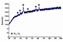 Figure 1. XRD pattern of the co-precipitated magnetite nanoparticles