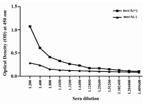Figure 6. Titration of anti-PBP2a antibody in experimental group with ELISA method. Sera of experimental groups were diluted and ELISA was carried out. Values are presented as mean±S.D of 14 mice in each group