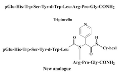 Figure 1. Chemical structures of the triptorelin and the new analogue