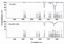Figure 3. ATR-FTIR spectra of PLLA/PCL and gelatin coated PLLA/PCL. The * indicates characteristic peaks of PLLA/PCL and # indicates peak for Amide III of gelatin.