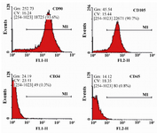Figure 2. Flow cytometry analysis of human Wharton's Jelly-Mesenchymal Stem Cells (WJ-MSCs) for surface markers. The cells were positive for CD90 and CD105, but roughly negative for CD34 and CD45.