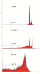 Figure 5. Estimation of apoptotic effect of O. erinaceus crude polysaccharide on cervical cancer cells by flow cytometry. Flow cytometry histogram of untreated and treated HeLa cells showed that inhibitory concentrations of extracted polysaccharide (25, 50 µg/ml) increased sub-G1 peak demonstrating involvement of apoptotic cells in cytotoxicity of brittle star polysaccharide.