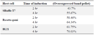 Table 1. Quantification of the overexpressed reteplase bands to the total insoluble fraction for three strains