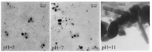 <p>Figure 2. TEM micrograph of biologically synthesized silver nanoparticle at various pHs. Spherical nanoparticles were formed in acidic and neutral pHs; while nanorods were developed at pH=11.</p>