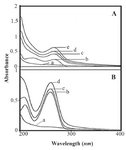 <p>Figure 2. A) UV-visible spectra of (a) HBCD (100 <em>μM</em>); (b) RNA (40 <em>μM</em>), (cj) HBCD-RNA complexes: (c) 250, (d) 300, (e) 350, (f) 400, (g) 450, (h) 500, (i) 550, (j) 600 <em>μM</em>. B) Plot of 1/(A-A0) <em>vs.</em> (1/polymer concentration) for HBCD and RNA complexes, where A0 is the initial absorbance of RNA (260 <em>nm</em>) and A is the recorded absorbance (260 <em>nm</em>) at different polymer concentrations (250-600 <em>μM</em>) with constant RNA concentration of 40 <em>μM</em> at pH=7.4.</p>