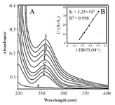 <p>Figure 3. FTIR spectra in the region of 1800-600 <em>cm</em><sup>-1</sup> for (A) Baker&rsquo;s yeast RNA (10 <em>mM</em>) (B) HBCD (C) HBCD-RNA: RNA (10 <em>mM</em>), HBCD (5 <em>mM</em>) (D) HBCD-RNA: RNA (10 <em>mM</em>), HBCD (10 <em>mM</em>) in aqueous solution at pH=7. RNA, HBCD and two complexes at various HBCD/RNA (phosphate) molar ratios (1/2, 1/1) (four top spectra); two difference spectra (bottom two spectra).</p>
