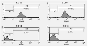 <p>Figure 2. Flow cytometric analysis of hADSCs which were CD44/CD90-positive and were negative for CD14 and CD45 (hematopoietic markers).</p>