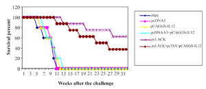 <p>Figure 1. Survival of immunized BALB/c mice after challenge with 2×10<sup>6</sup> promastigotes of <em>L. major</em>, four weeks after the last immunization.</p>
