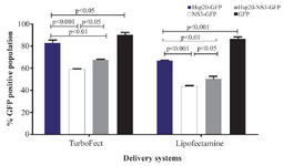 <p>Figure 4. Comparison of TurboFect and Lipofectamine delivery in two independent experiments: The transfection efficiency of Tur-boFect was significantly higher than Lipofectamine.</p>