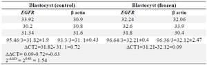 <p>Table 2. Data analysis results of <em>EGFR</em> expression in blastocyst group</p>