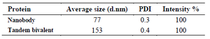 <p>Table 1. Size distribution parameters of nanobody and tandem bivalent nanobody</p>