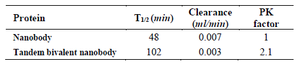 <p>Table 2. Pharmacokinetic parameters obtained for tandem bivalent nanobody and the native one</p>